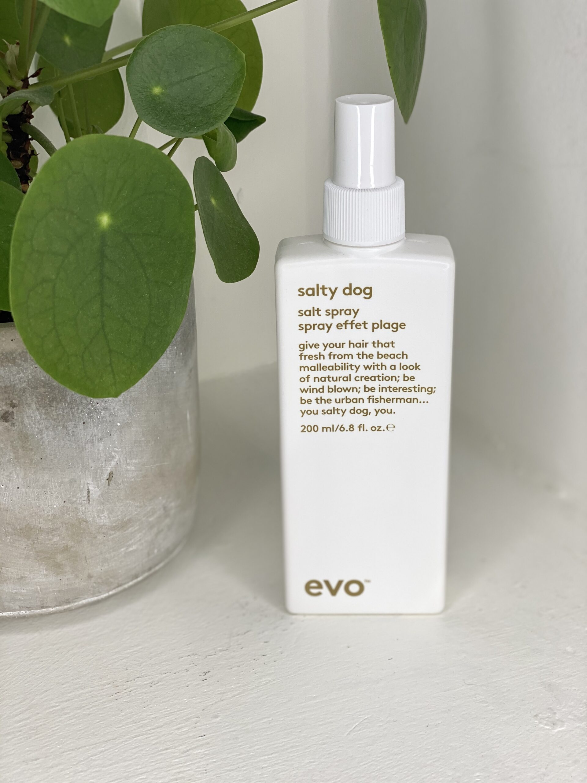EVO Salty Dog